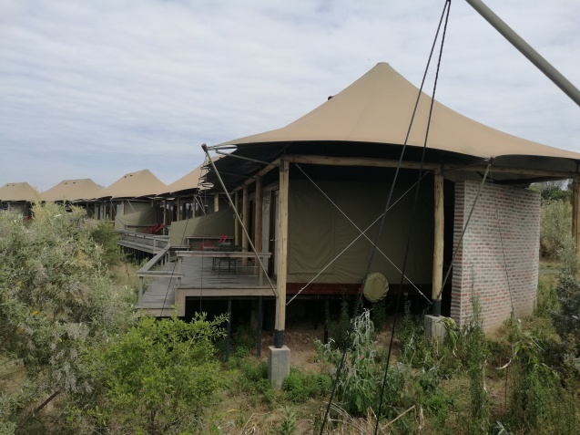 Angama Mara Luxury